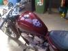 2011VT600Tank1