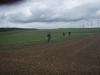 Über Feld und Wiesen mit Ausblick auf Mainhatten