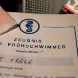 Seepferdchen-Urkunde und Slotcar