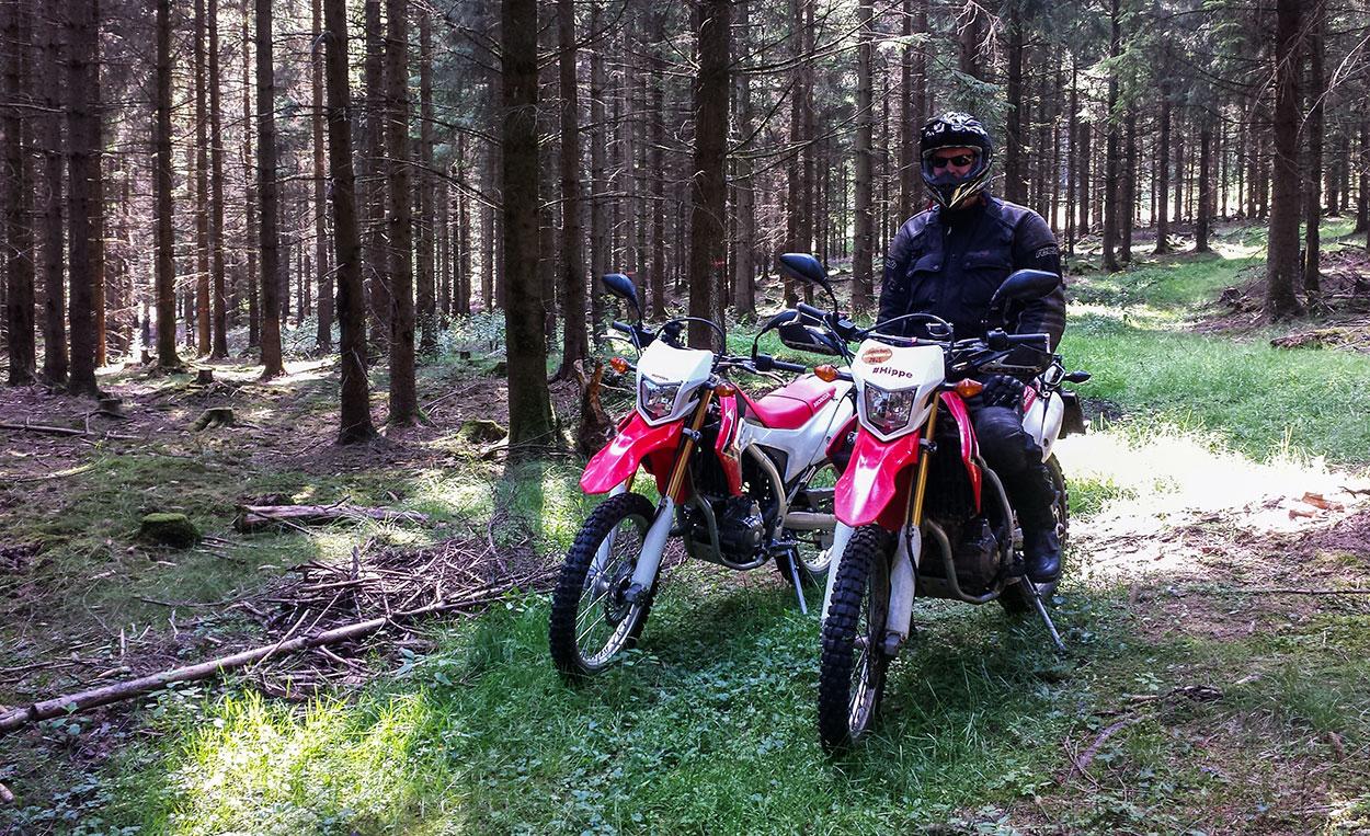 Mit der CRF durch das Unterholz